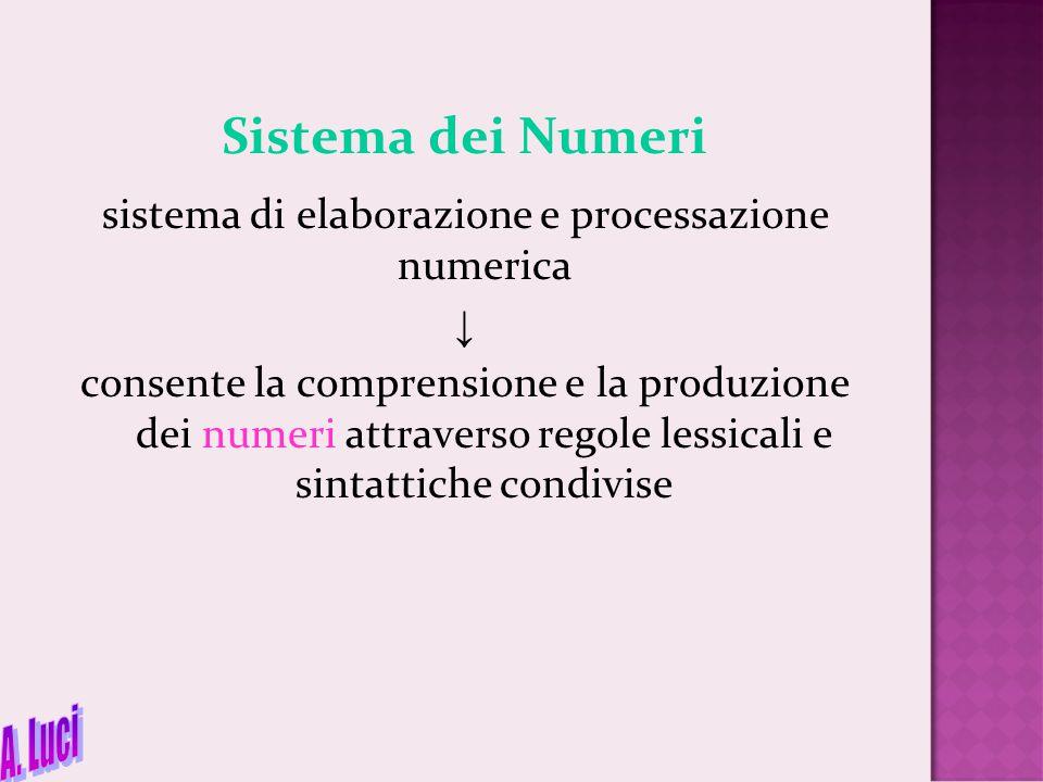 sistema di elaborazione e processazione numerica