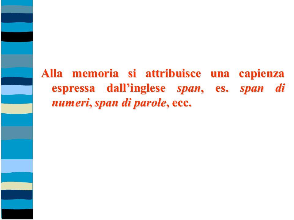 Alla memoria si attribuisce una capienza espressa dall'inglese span, es.