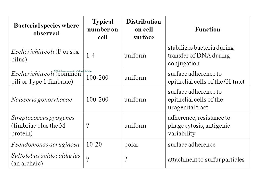 Bacterial species where observed Distribution on cell surface
