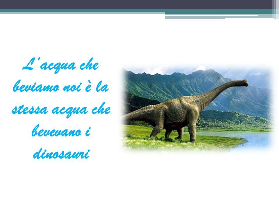 L'acqua che beviamo noi è la stessa acqua che bevevano i dinosauri