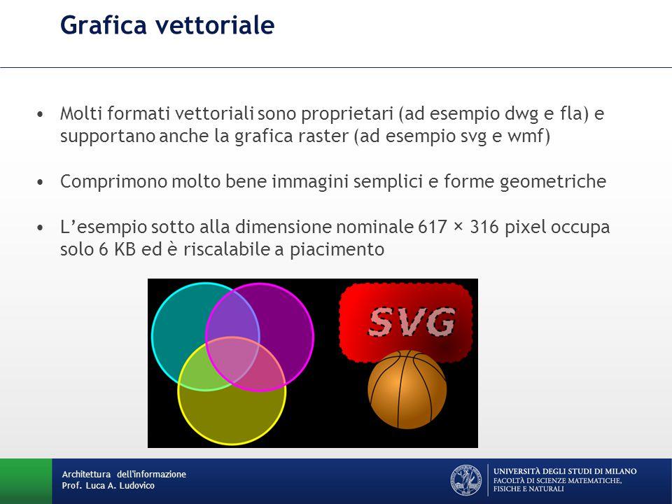 Grafica vettoriale Molti formati vettoriali sono proprietari (ad esempio dwg e fla) e supportano anche la grafica raster (ad esempio svg e wmf)