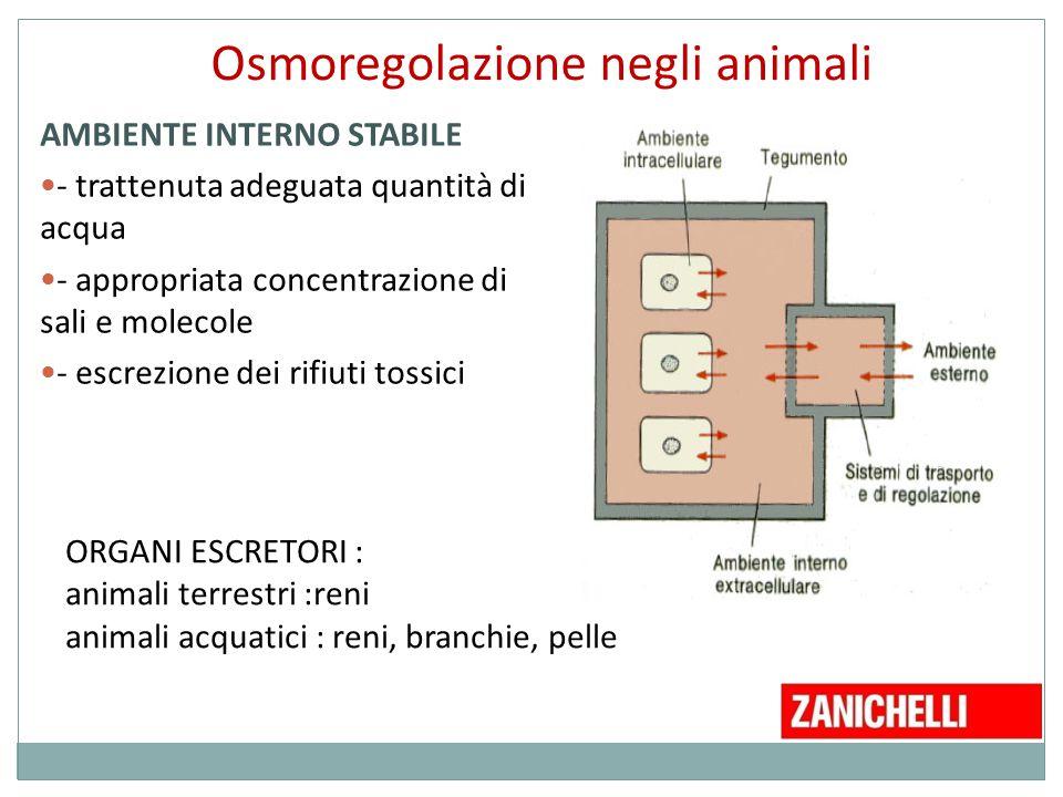 Osmoregolazione negli animali