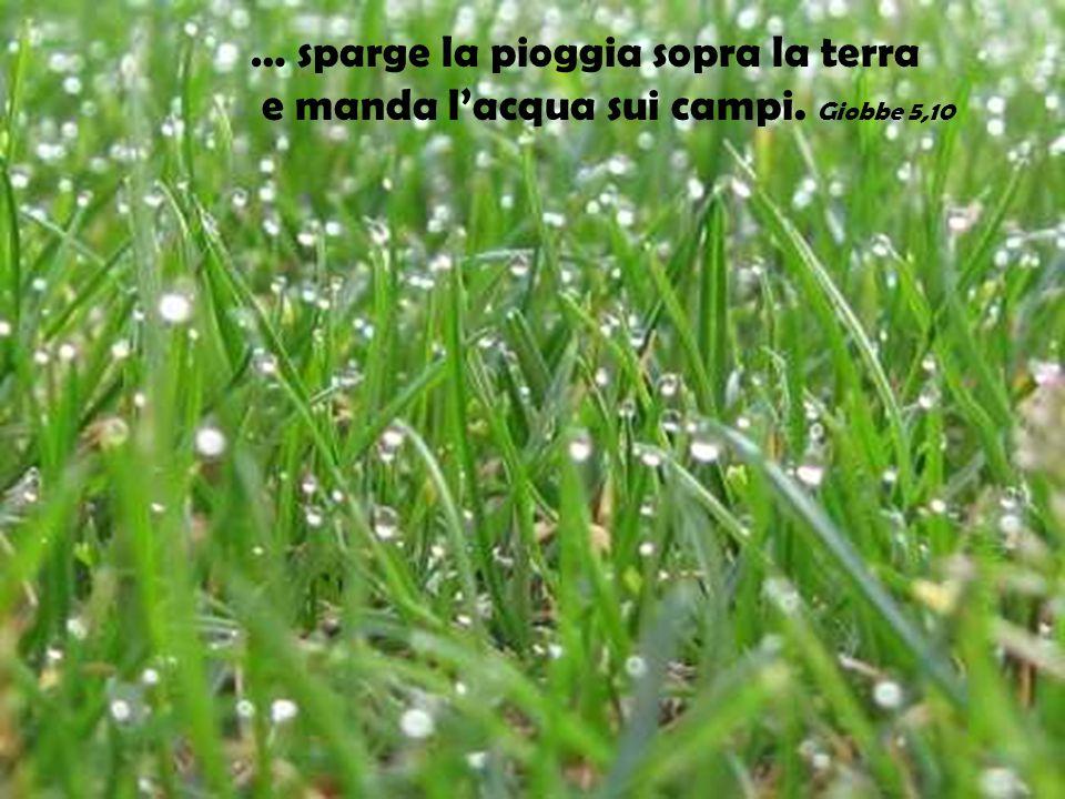 … sparge la pioggia sopra la terra