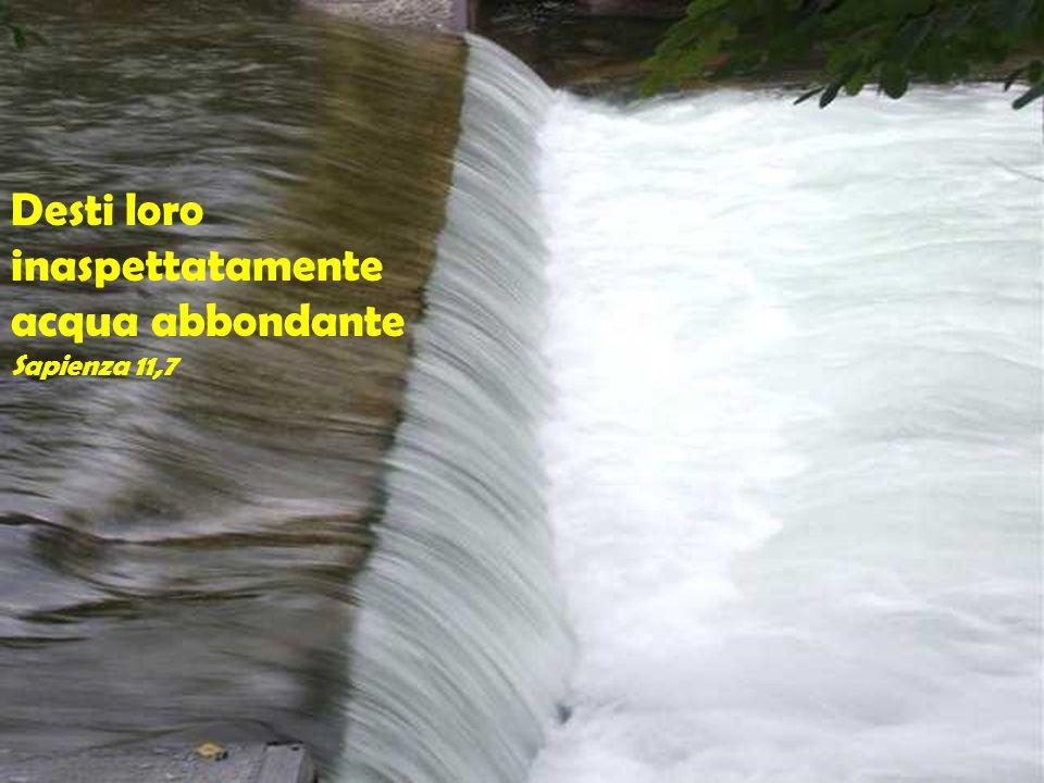 Desti loro inaspettatamente acqua abbondante Sapienza 11,7