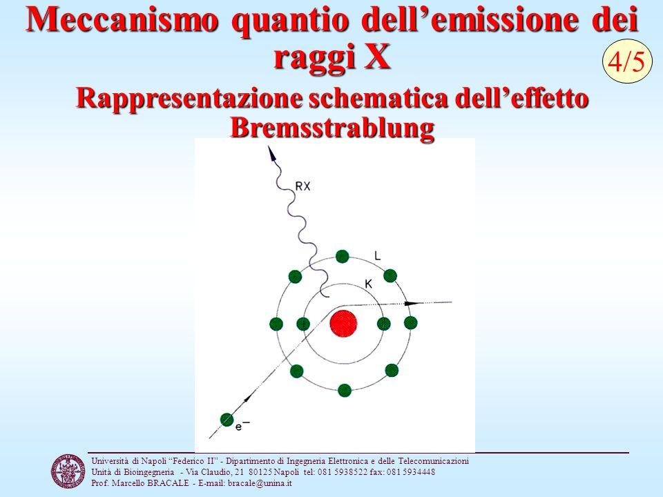 Meccanismo quantio dell'emissione dei raggi X