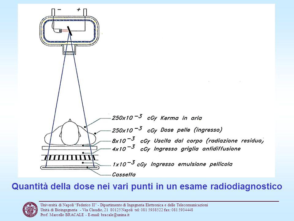 Quantità della dose nei vari punti in un esame radiodiagnostico