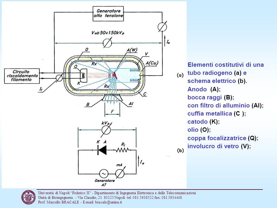 Elementi costitutivi di una tubo radiogeno (a) e