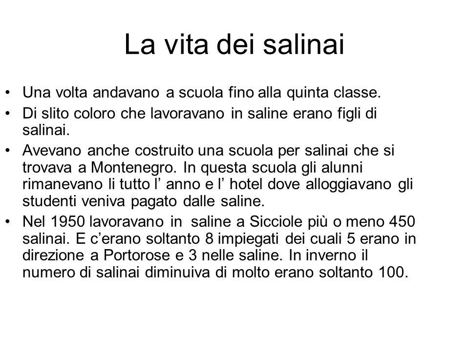 La vita dei salinai Una volta andavano a scuola fino alla quinta classe. Di slito coloro che lavoravano in saline erano figli di salinai.