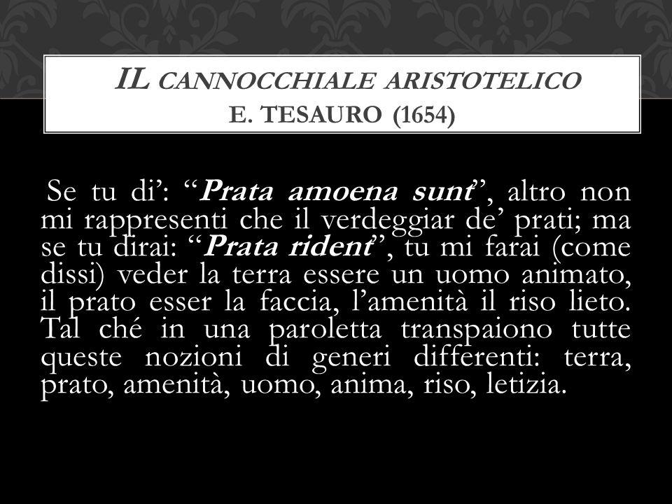 Il cannocchiale aristotelico E. Tesauro (1654)