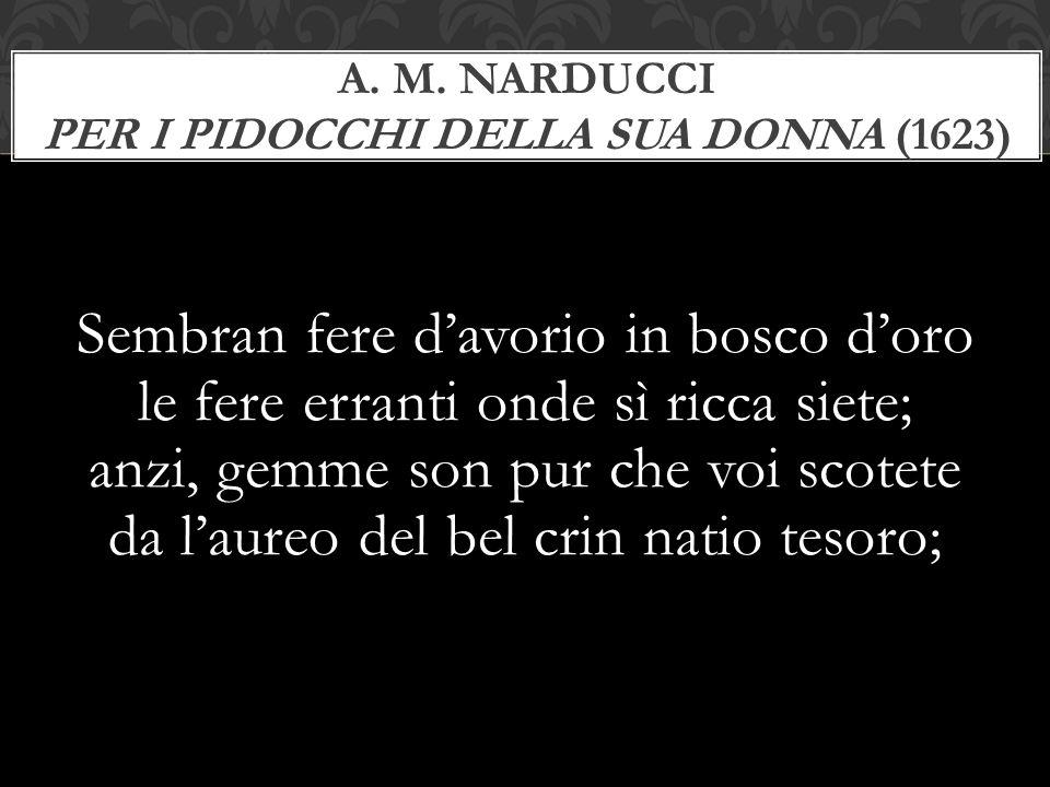 A. M. Narducci Per i pidocchi della sua donna (1623)