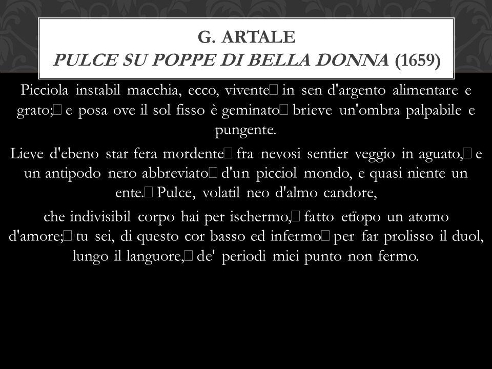 G. Artale Pulce su poppe di bella donna (1659)