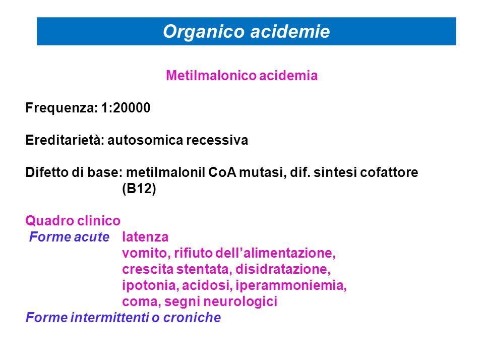 Metilmalonico acidemia