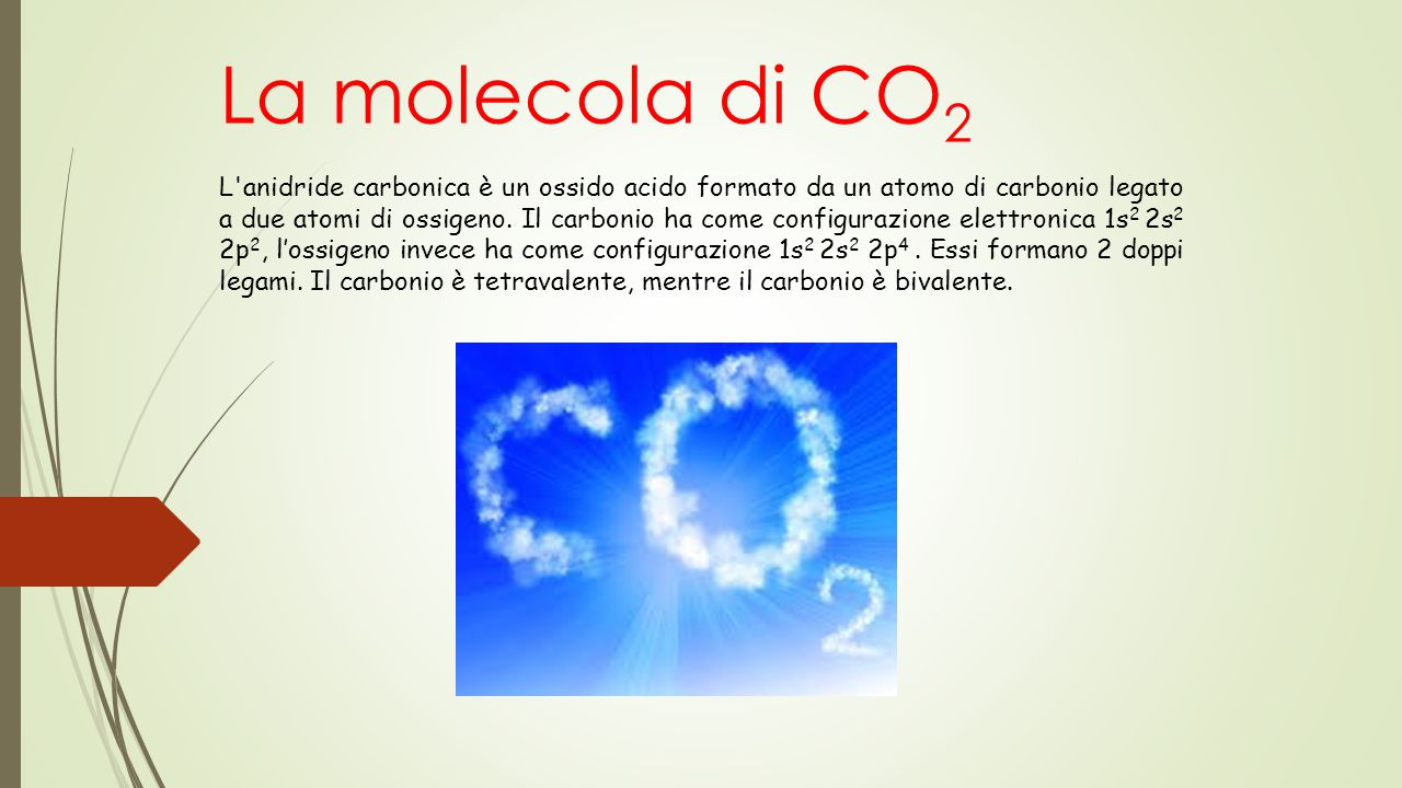 La molecola di CO2