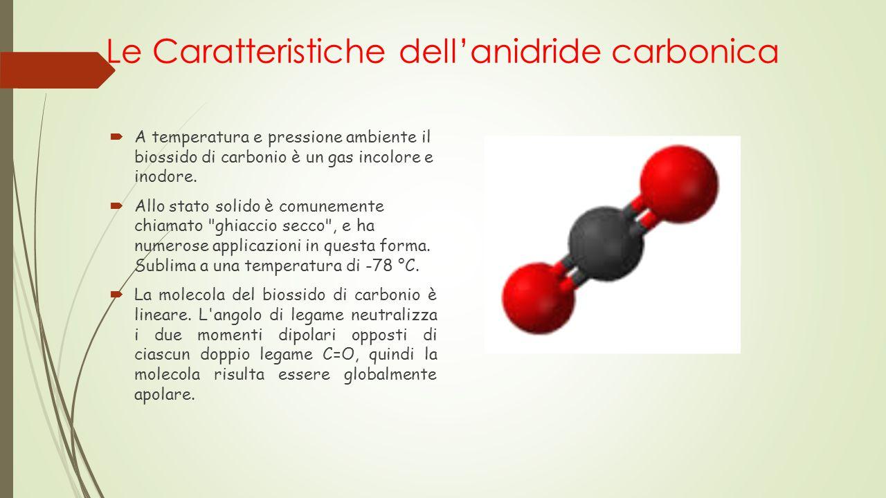 Le Caratteristiche dell'anidride carbonica
