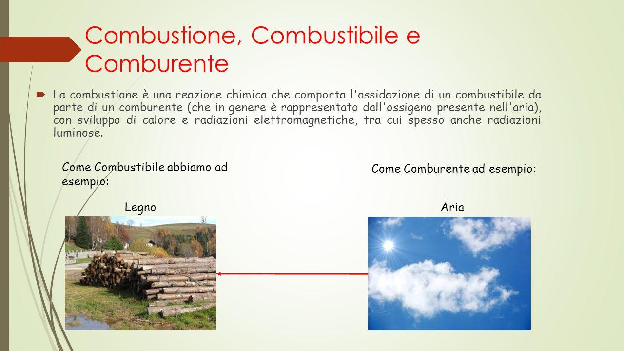 Combustione, Combustibile e Comburente