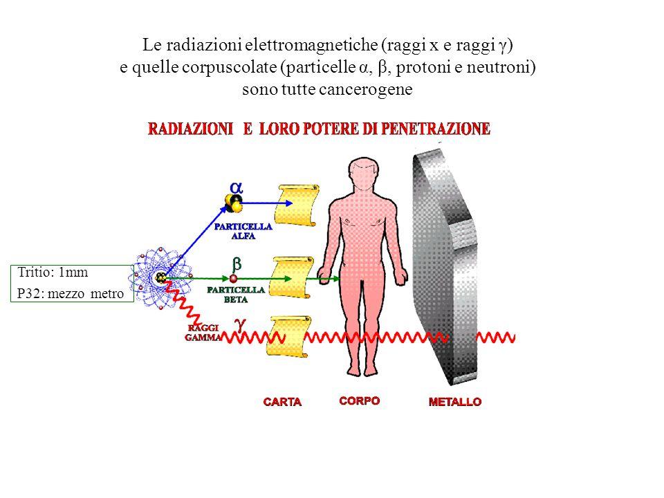 Le radiazioni elettromagnetiche (raggi x e raggi γ)