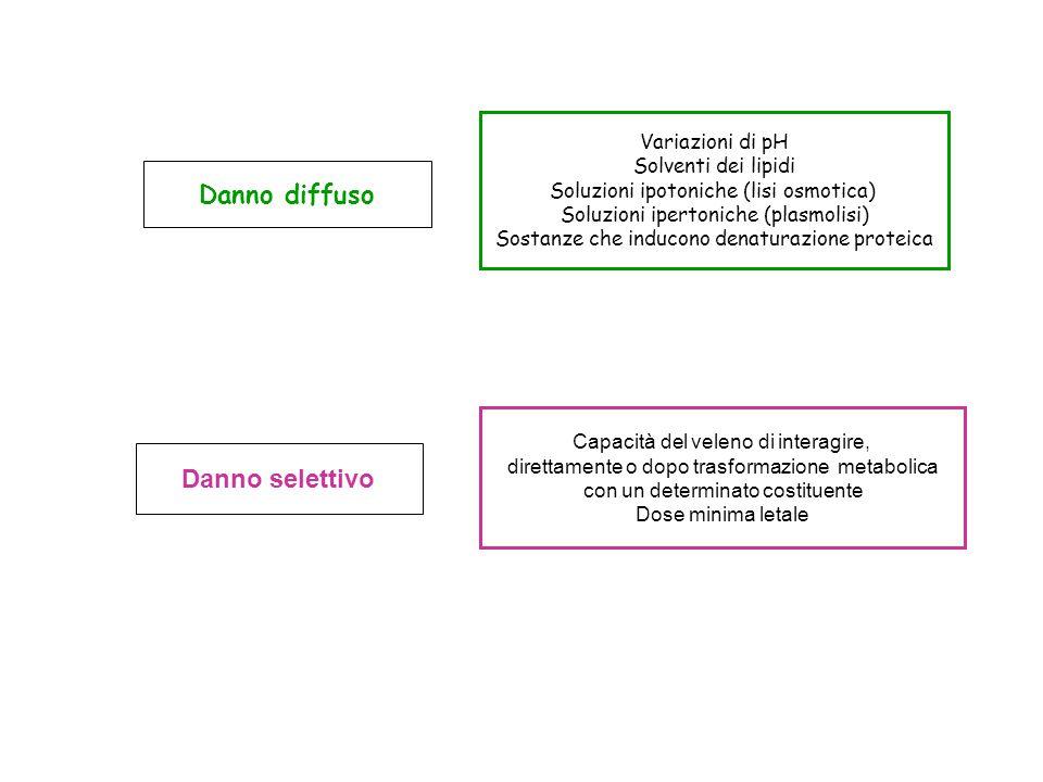 Danno diffuso Danno selettivo Variazioni di pH Solventi dei lipidi