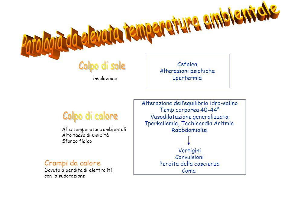 Patologia da elevata temperatura ambientale