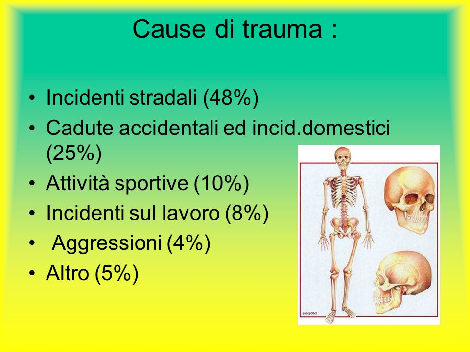 Cause di trauma : Incidenti stradali (48%)