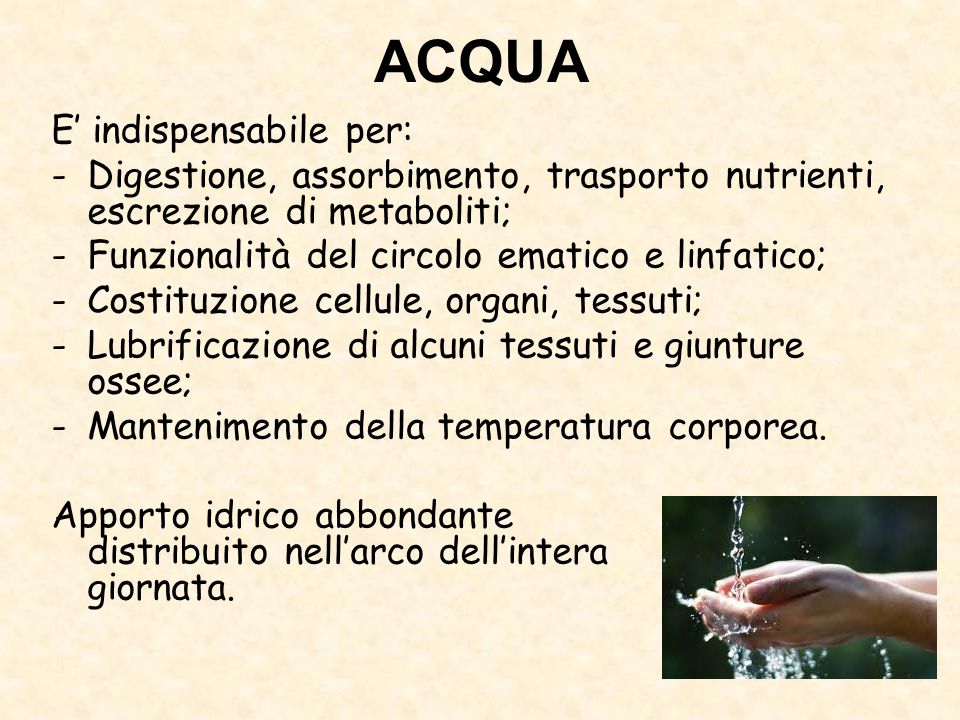 ACQUA E' indispensabile per: