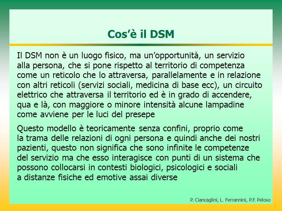Cos'è il DSM