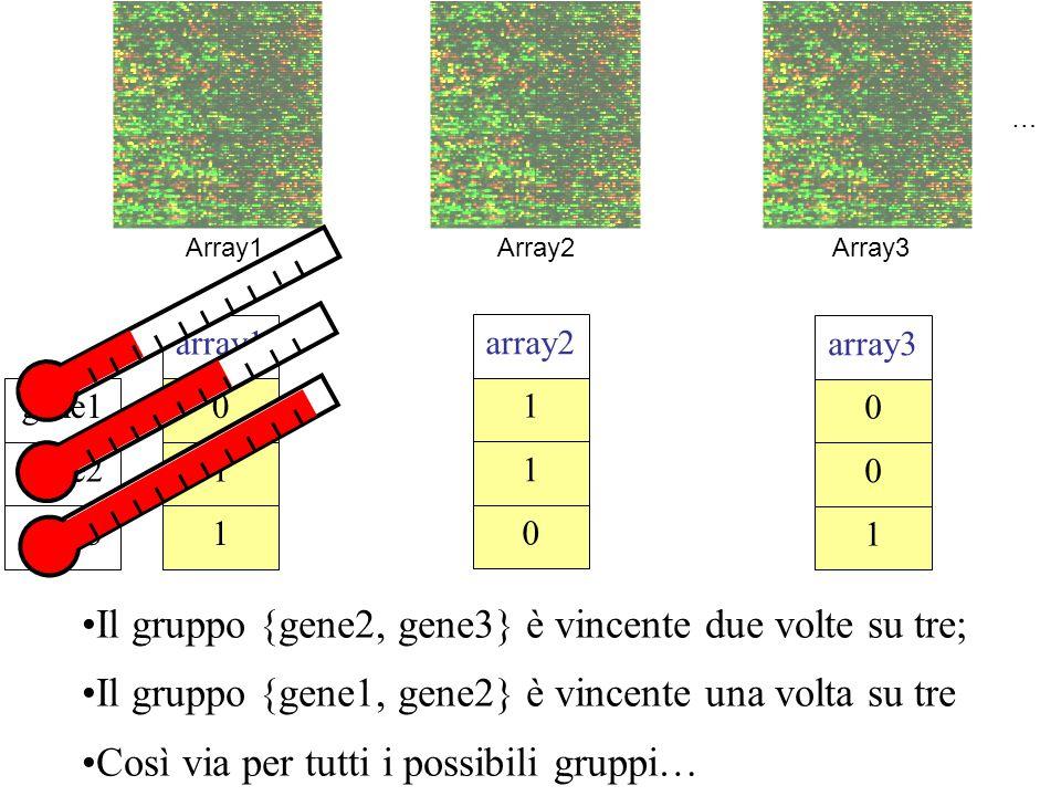 Il gruppo {gene2, gene3} è vincente due volte su tre;