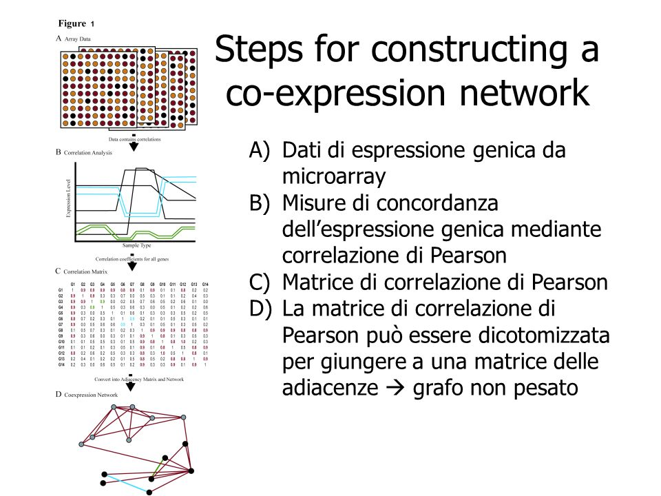 Steps for constructing a co-expression network