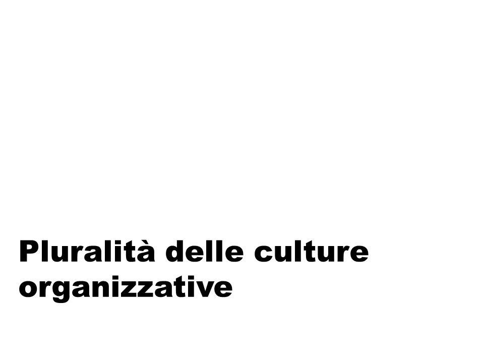 Pluralità delle culture organizzative
