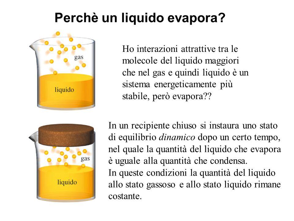 Perchè un liquido evapora