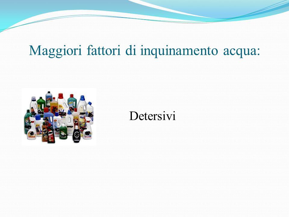 Maggiori fattori di inquinamento acqua: