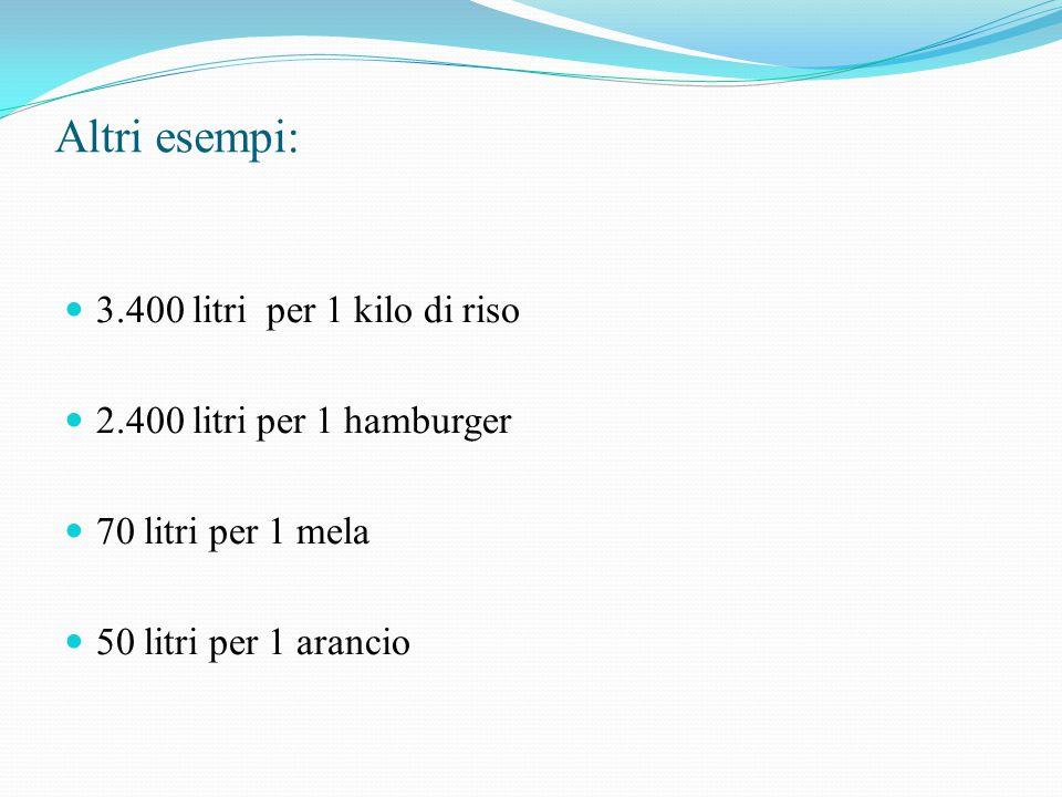 Altri esempi: 3.400 litri per 1 kilo di riso