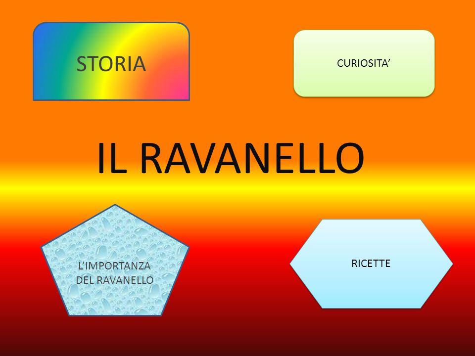 L'IMPORTANZA DEL RAVANELLO