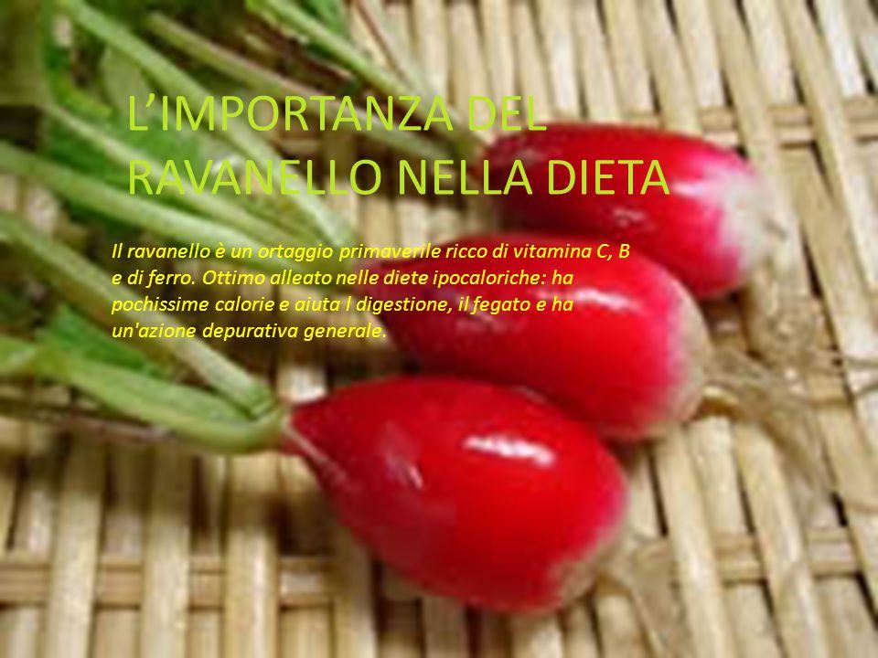 L'IMPORTANZA DEL RAVANELLO NELLA DIETA