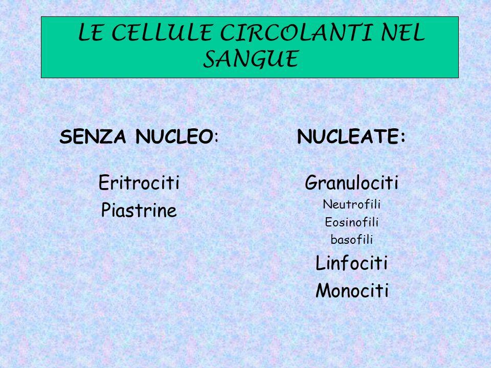 LE CELLULE CIRCOLANTI NEL SANGUE
