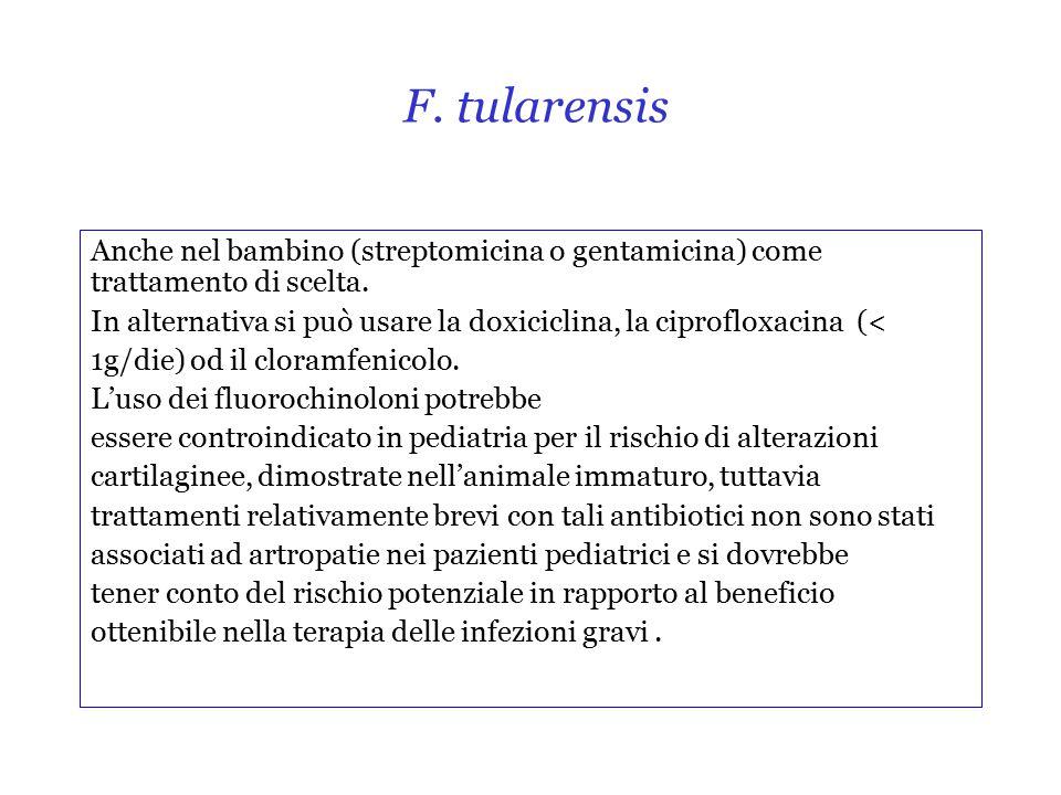 F. tularensis Anche nel bambino (streptomicina o gentamicina) come trattamento di scelta.
