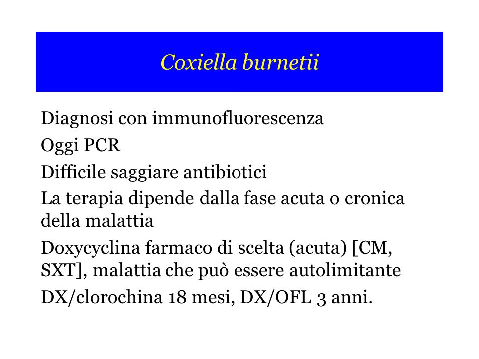 Coxiella burnetii Diagnosi con immunofluorescenza Oggi PCR