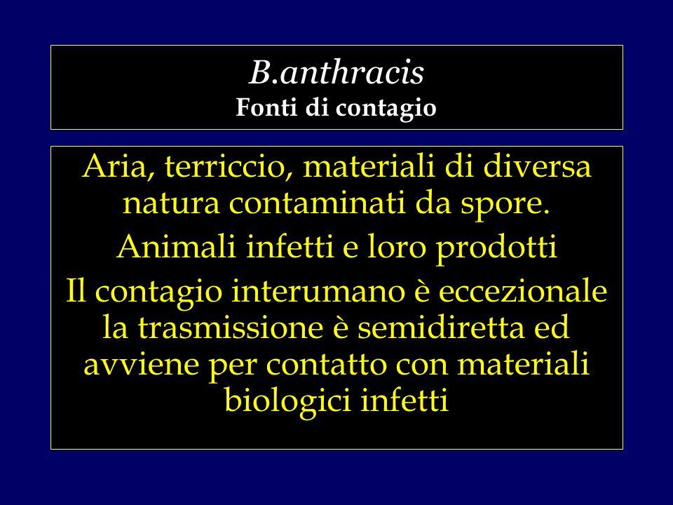 B.anthracis Fonti di contagio