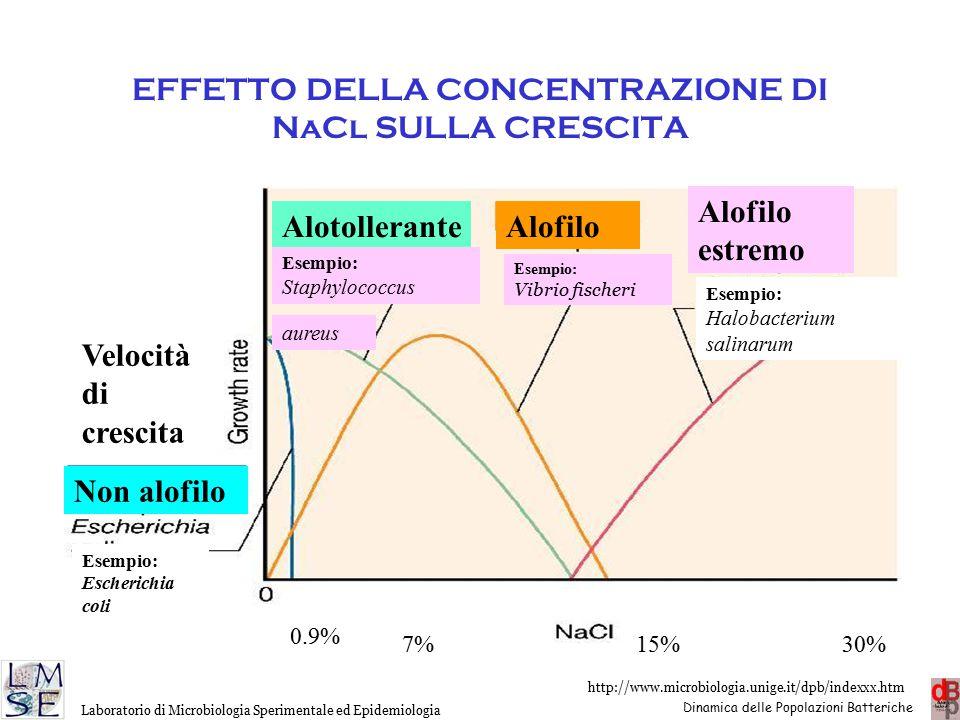EFFETTO DELLA CONCENTRAZIONE DI NaCl SULLA CRESCITA