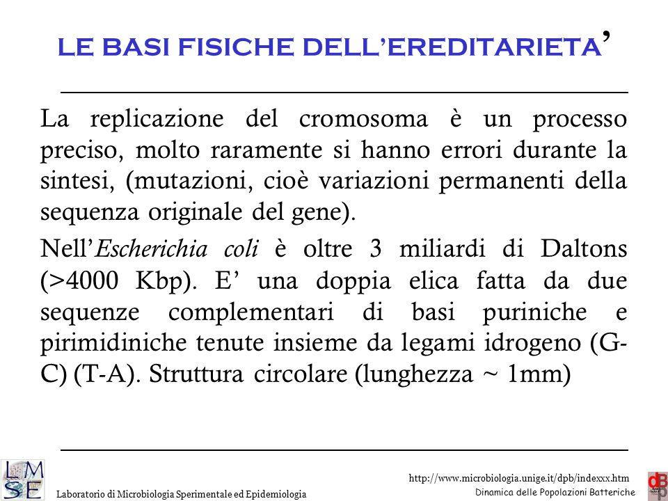LE BASI FISICHE DELL'EREDITARIETA'