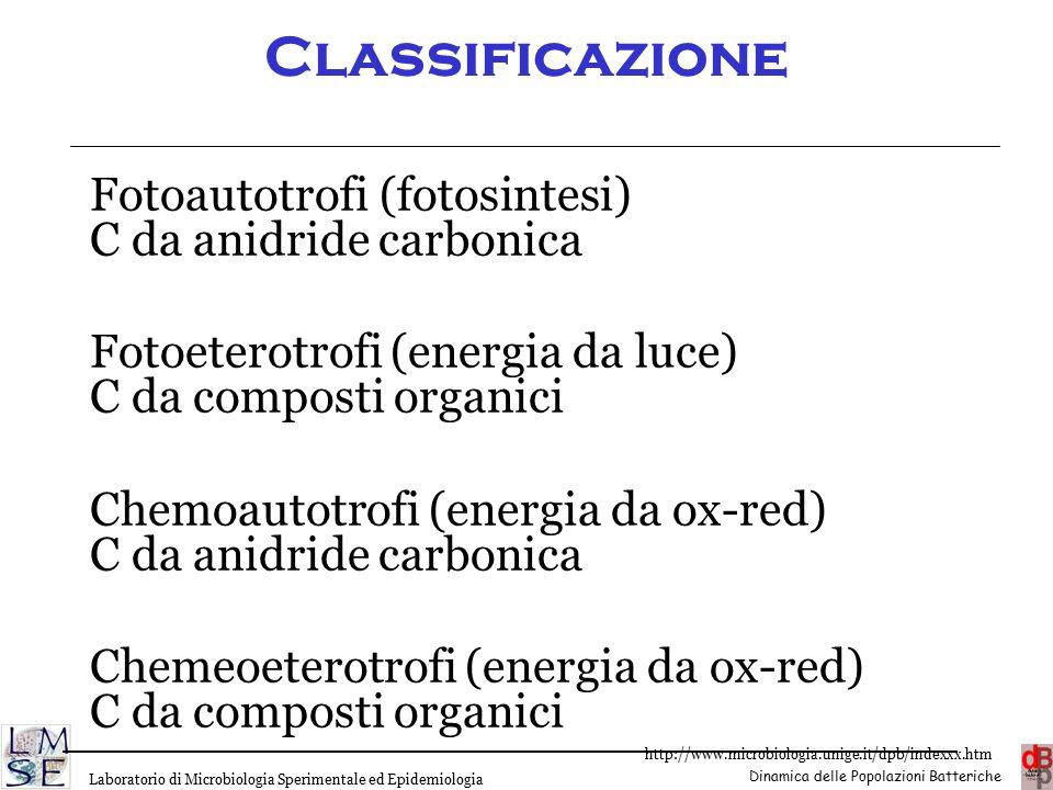 Classificazione Fotoautotrofi (fotosintesi) C da anidride carbonica