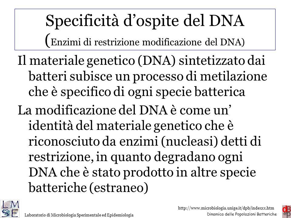 Specificità d'ospite del DNA (Enzimi di restrizione modificazione del DNA)