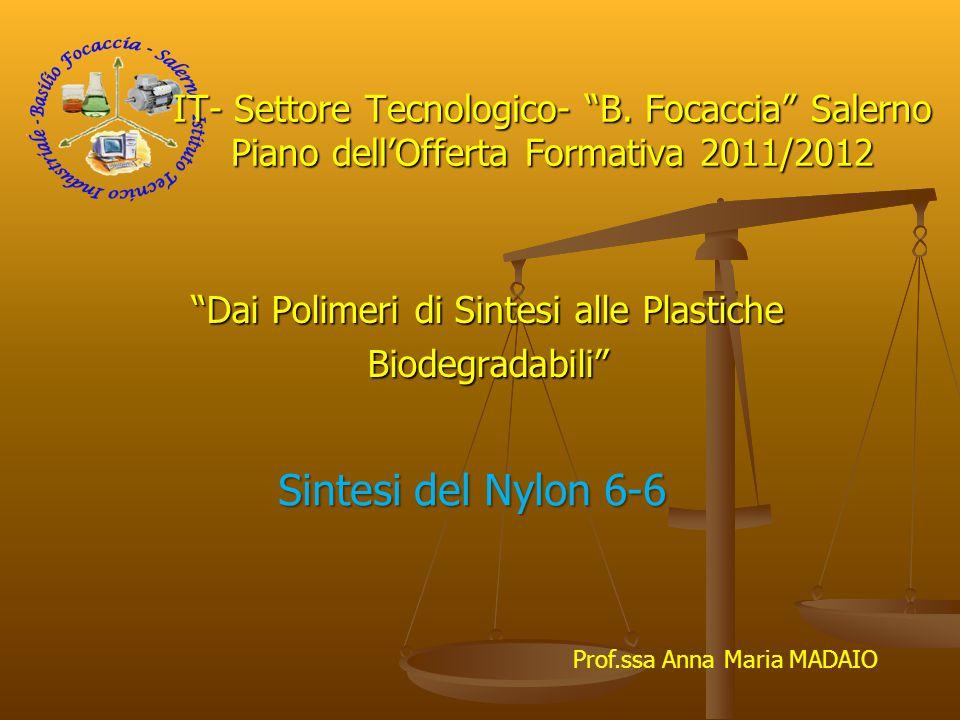 Dai Polimeri di Sintesi alle Plastiche Biodegradabili