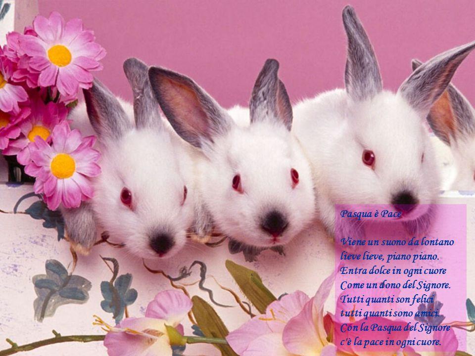 Pasqua è Pace Viene un suono da lontano. lieve lieve, piano piano. Entra dolce in ogni cuore. Come un dono del Signore.