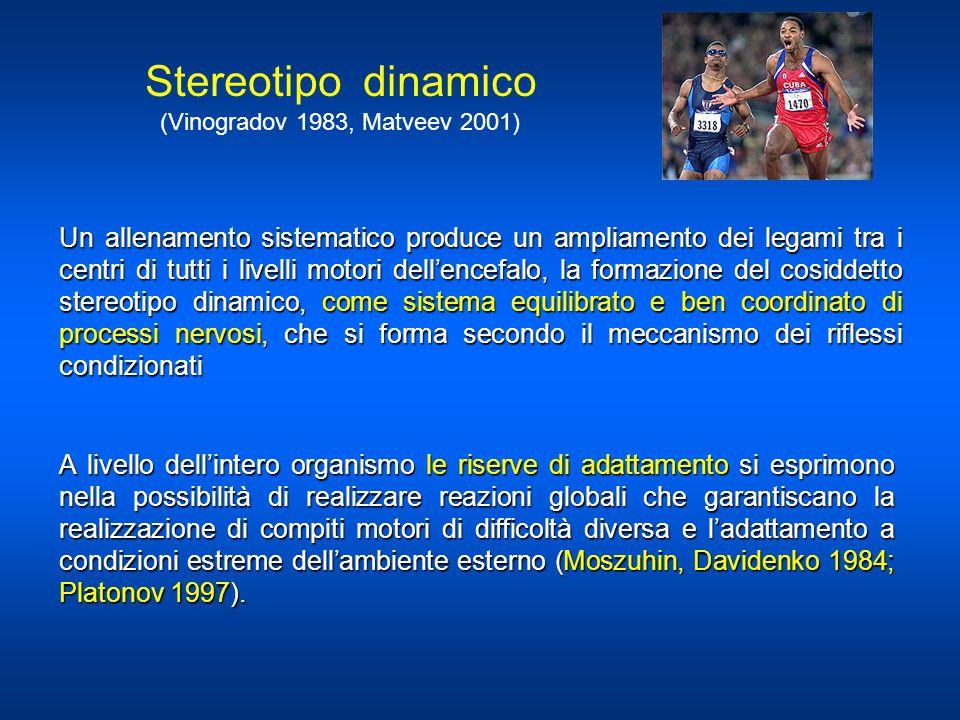 Stereotipo dinamico (Vinogradov 1983, Matveev 2001)