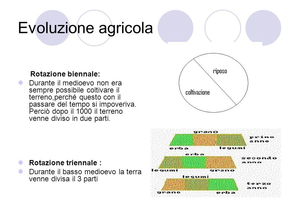 Evoluzione agricola Rotazione biennale: