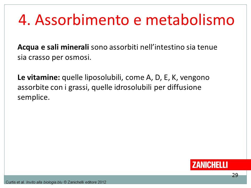 4. Assorbimento e metabolismo