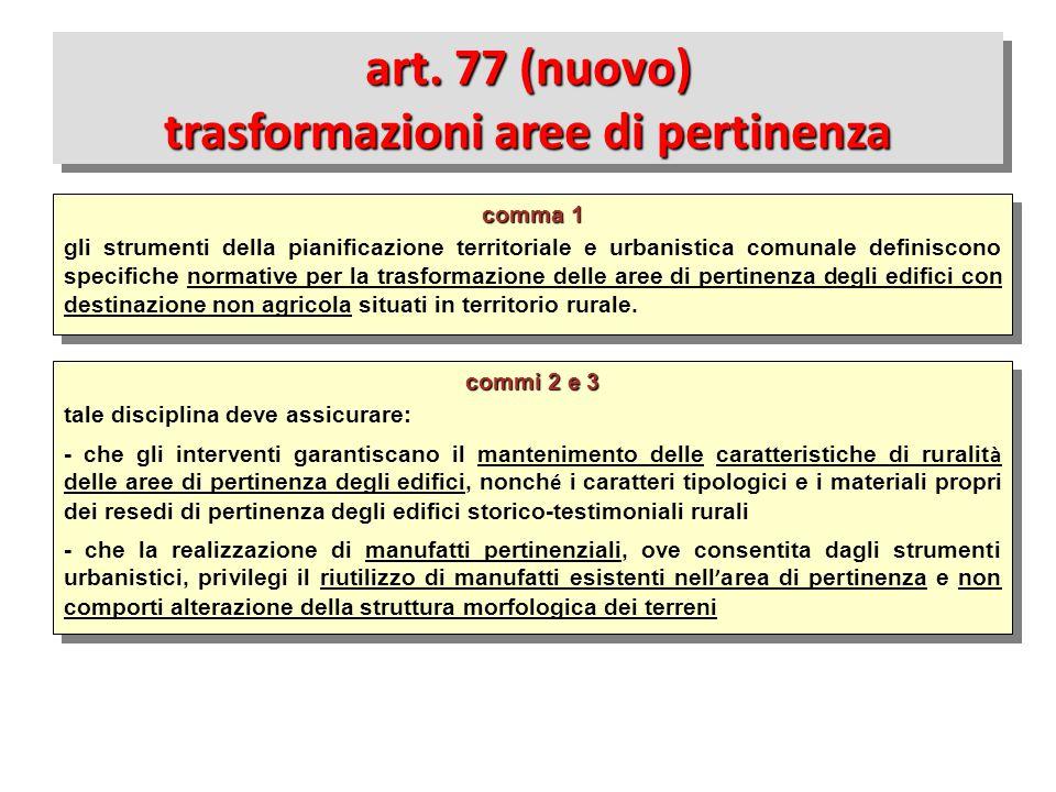 art. 77 (nuovo) trasformazioni aree di pertinenza
