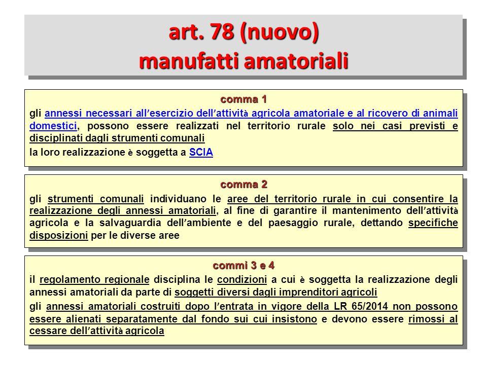 art. 78 (nuovo) manufatti amatoriali