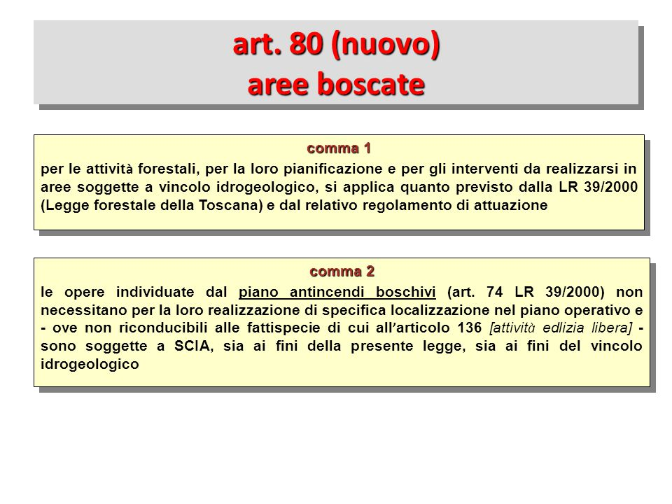 art. 80 (nuovo) aree boscate
