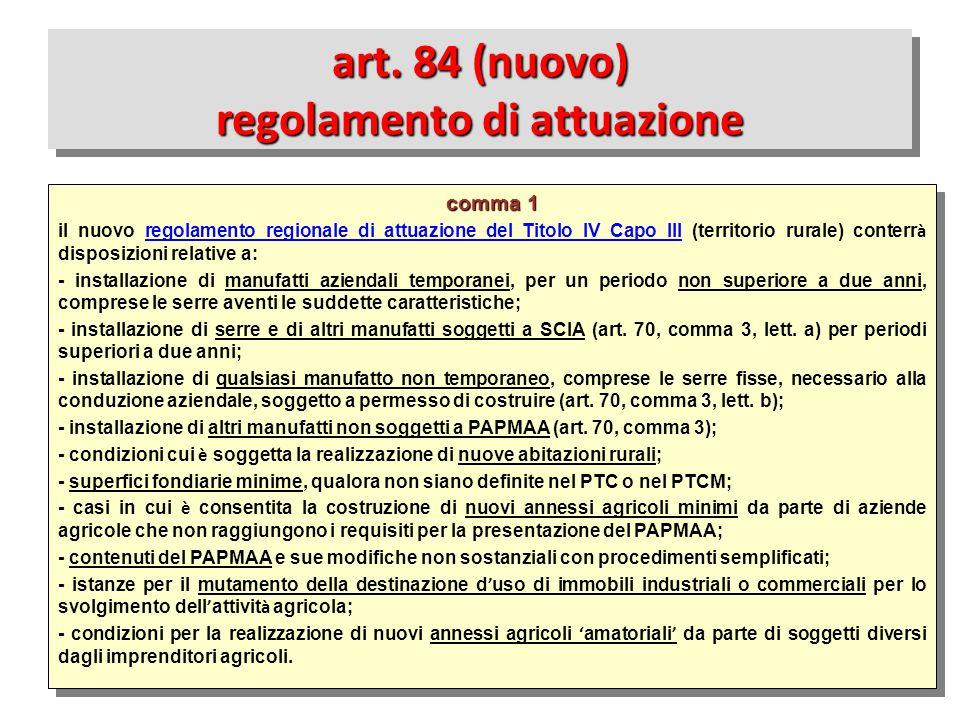 art. 84 (nuovo) regolamento di attuazione
